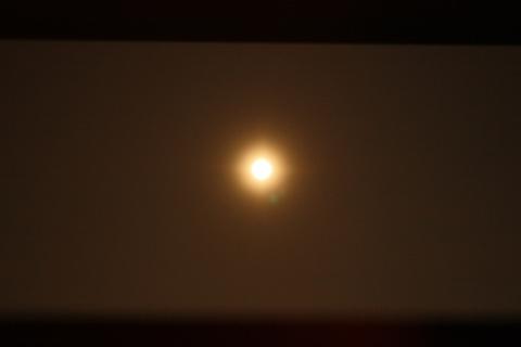 20100626アクアリウム(40水槽)レッドチェリーシュリンプ満月.JPG