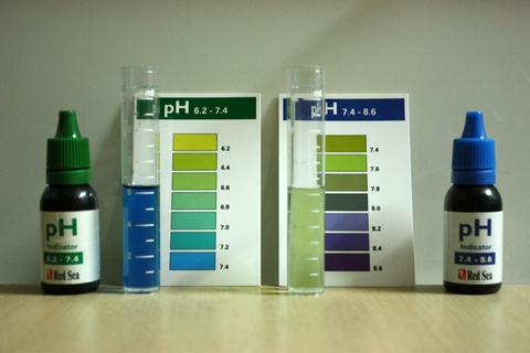 20100928アクアリウム(40水槽)レッドチェリーシュリンプ水質検査PHペーハー.JPG