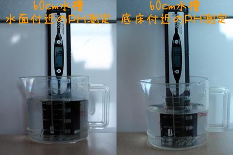 20101111アクアリウム(60水槽)水質検査PHペーハー水面底床.JPG