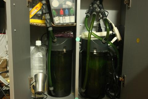 20100609アクアリウム(60水槽)黒髭苔除去外部フィルター掃除1.JPG