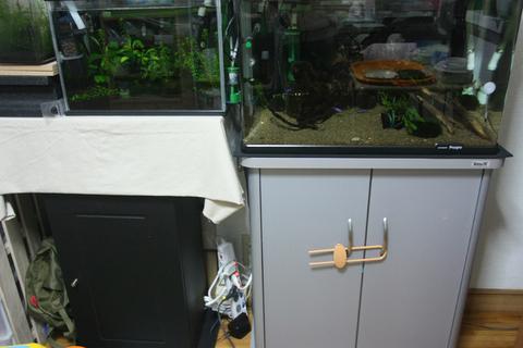 20100609アクアリウム(60水槽)黒髭苔除去設備構成.JPG