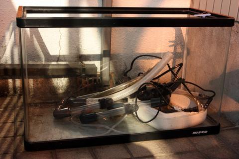 20100916アクアリウム(メンテナンス)水槽道具洗浄1.JPG