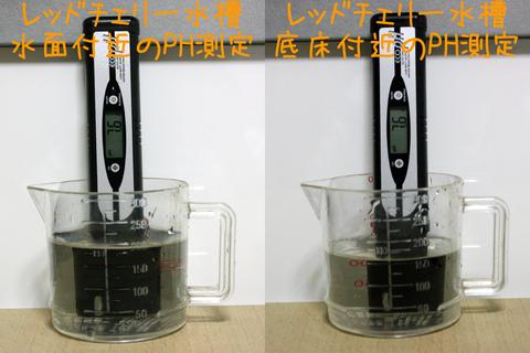 20101028アクアリウム(40水槽)水質検査PHペーハー.JPG