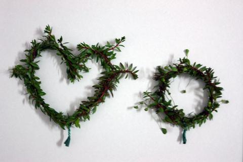 20101224アクアリウム(クリスマス)水槽用水草リース水草巻き付け.JPG