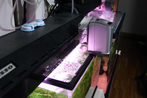 20101230アクアリウム(40水槽)レッドチェリーシュリンプ水槽フードタイマーテスト.JPG