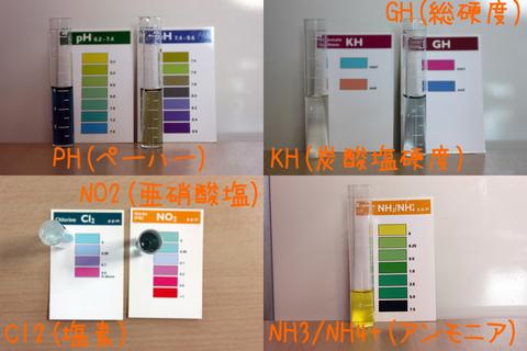 20110207アクアリウム(40水槽)水質検査1.JPG