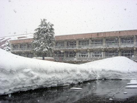 20110215アクアリウム(冬新潟豪雪)小学校母校.JPG
