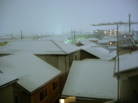 20110215アクアリウム(冬関東に雪)積雪夜2.JPG