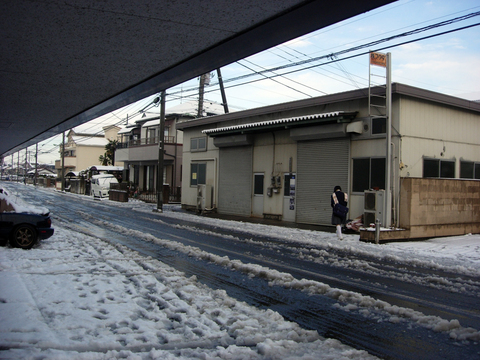 20110215アクアリウム(冬関東に雪)積雪朝.JPG