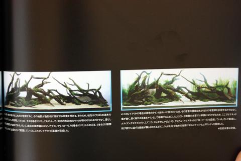 20110327アクアリウム(ガラスの中の大自然)制作工程.JPG