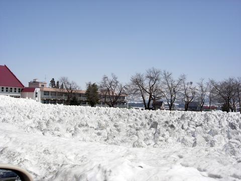 20110414新潟(春雪解け)小学校の残雪の除雪.JPG