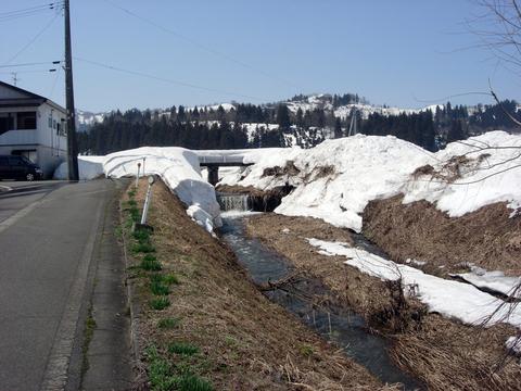 20110414新潟(春雪解け)川の流れ.JPG