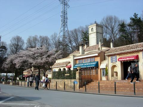 20110414星の王子様PA(寄居PA)全体と桜.JPG