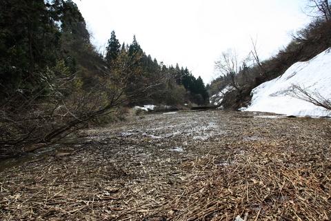 20110506原始の森(山菜採り)ダム.JPG