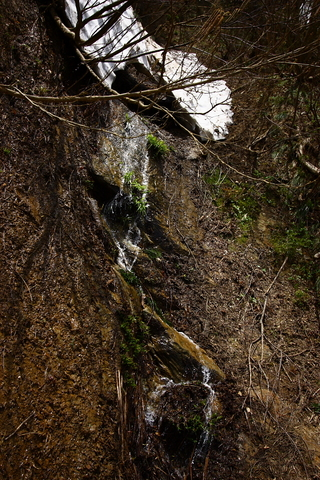 20110506原始の森(山菜採り)雪解け水の滝 1.JPG